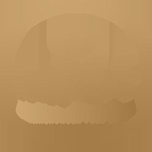 Inslicht Logo